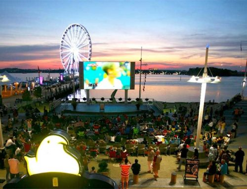 Top 10 Places for Memorable Summer Experiences for the Whole Family in the DMV